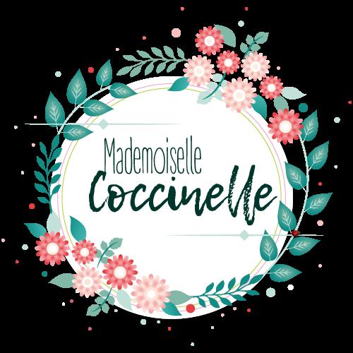 logo-mademoiselle-coccinelle-blog-green-mode-ethique